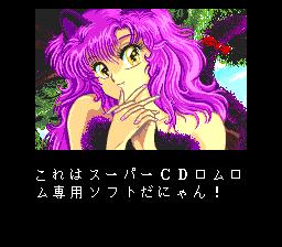 TurboGrafx CD Super System Card Warning Screens
